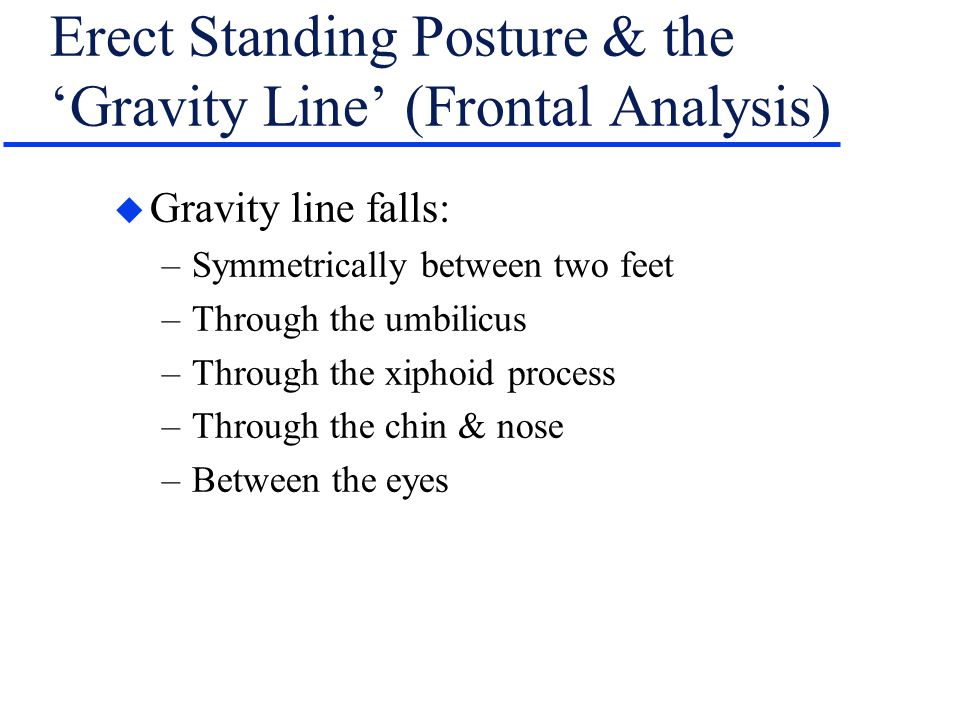 Erect Standing Posture & the 'Gravity Line' (Frontal Analysis)