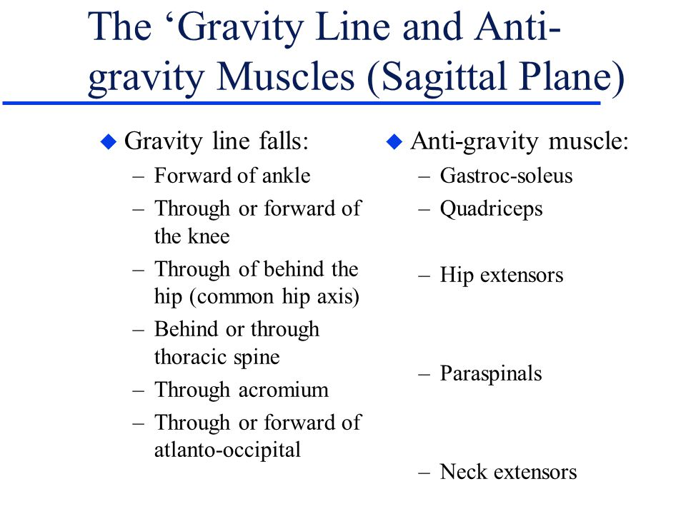 The 'Gravity Line and Anti-gravity Muscles (Sagittal Plane)