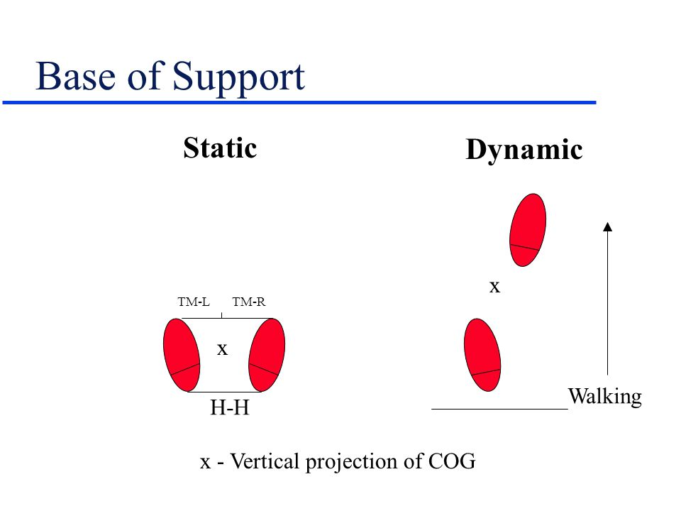 Base of Support Static Dynamic x x Walking H-H
