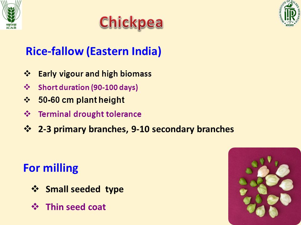 Chickpea Rice-fallow (Eastern India) For milling