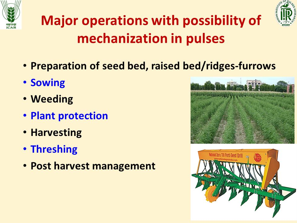 Major operations with possibility of mechanization in pulses