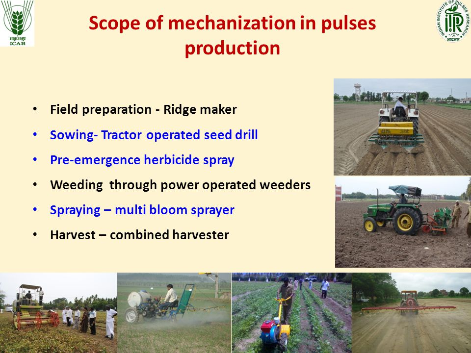 Scope of mechanization in pulses production