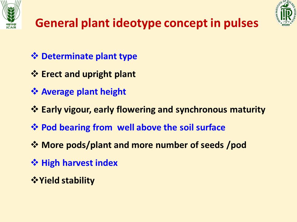 General plant ideotype concept in pulses