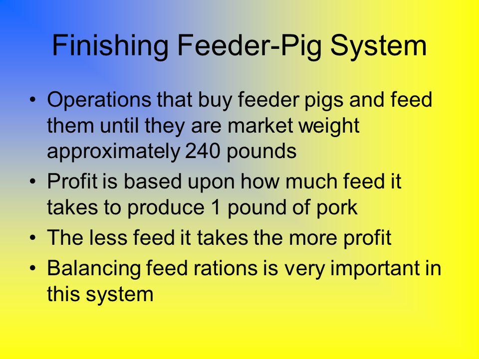 Finishing Feeder-Pig System