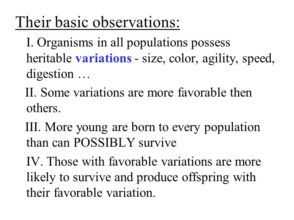 Their basic observations: