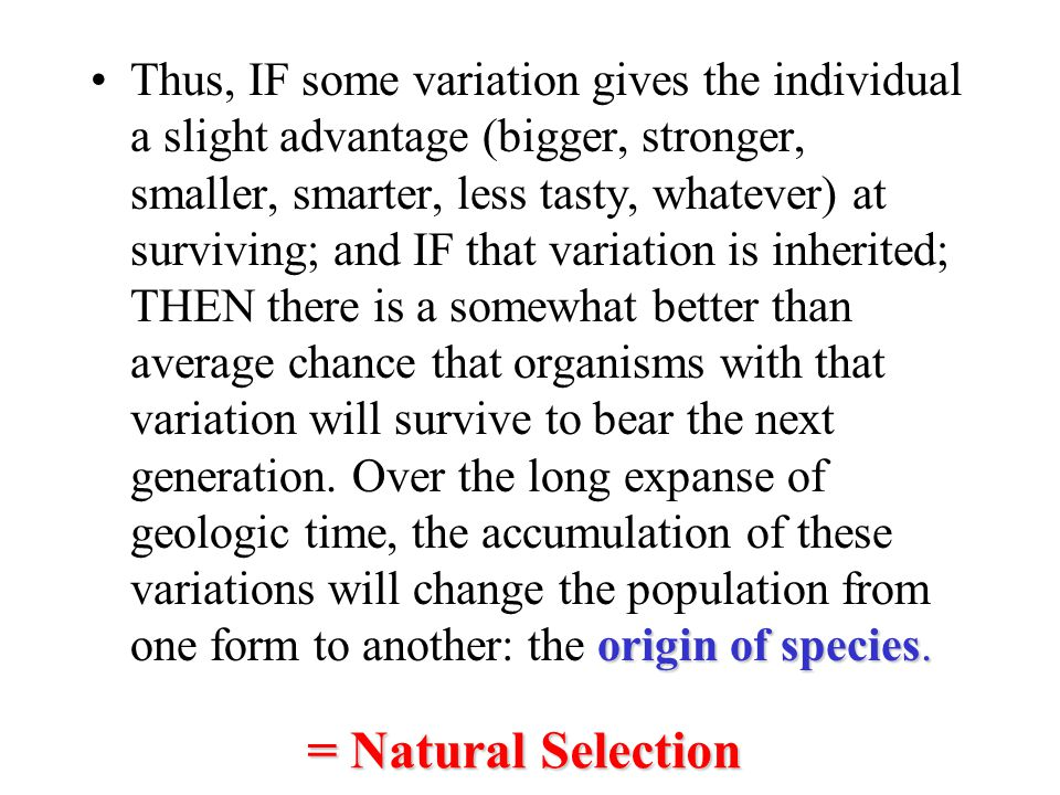 Thus, IF some variation gives the individual a slight advantage (bigger, stronger, smaller, smarter, less tasty, whatever) at surviving; and IF that variation is inherited; THEN there is a somewhat better than average chance that organisms with that variation will survive to bear the next generation. Over the long expanse of geologic time, the accumulation of these variations will change the population from one form to another: the origin of species.