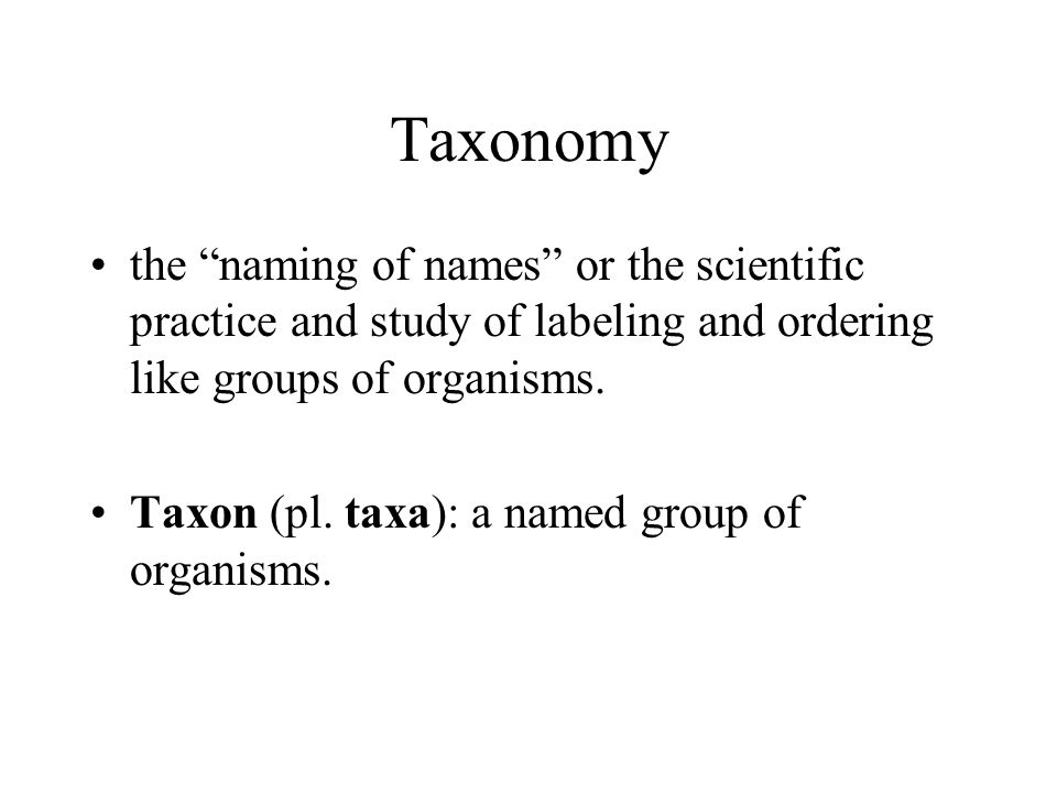 Taxonomy the naming of names or the scientific practice and study of labeling and ordering like groups of organisms.