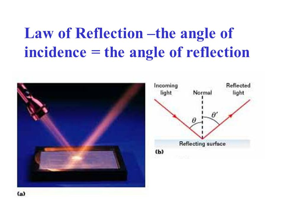 Law of Reflection –the angle of incidence = the angle of reflection