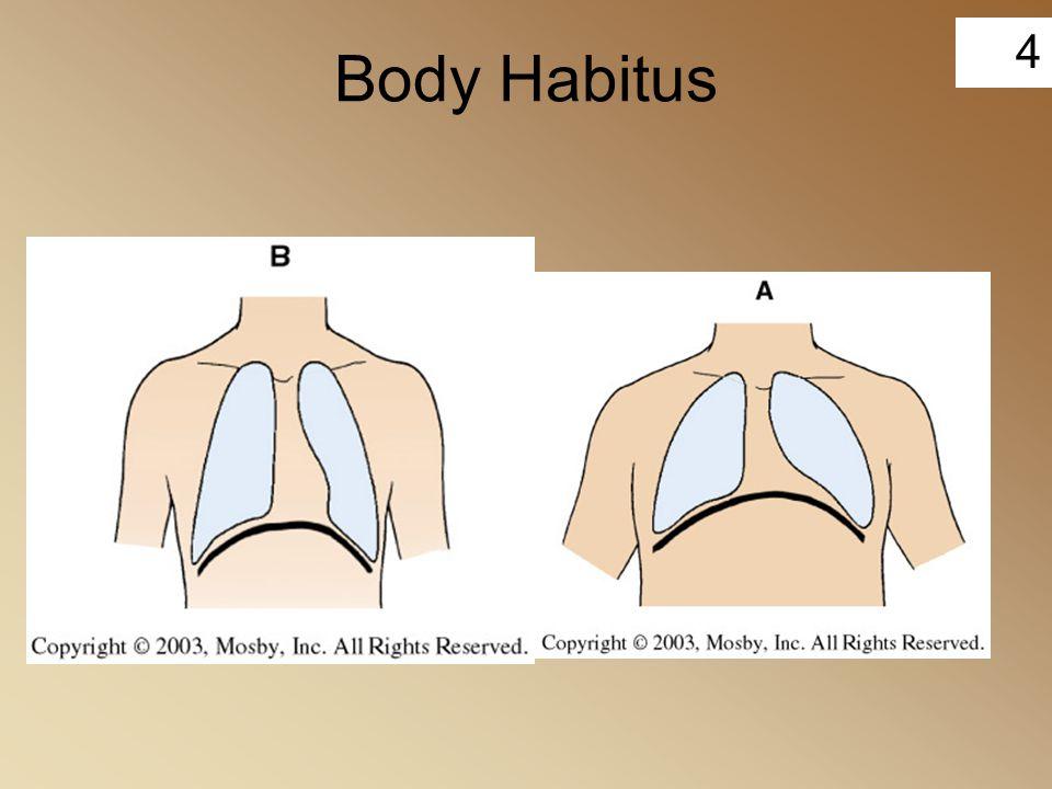 Body Habitus