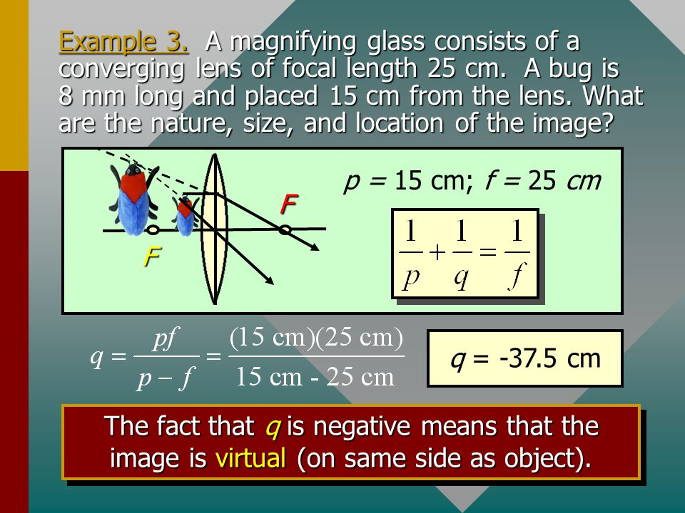 Example 3. A magnifying glass consists of a converging lens of focal length 25 cm. A bug is 8 mm long and placed 15 cm from the lens. What are the nature, size, and location of the image