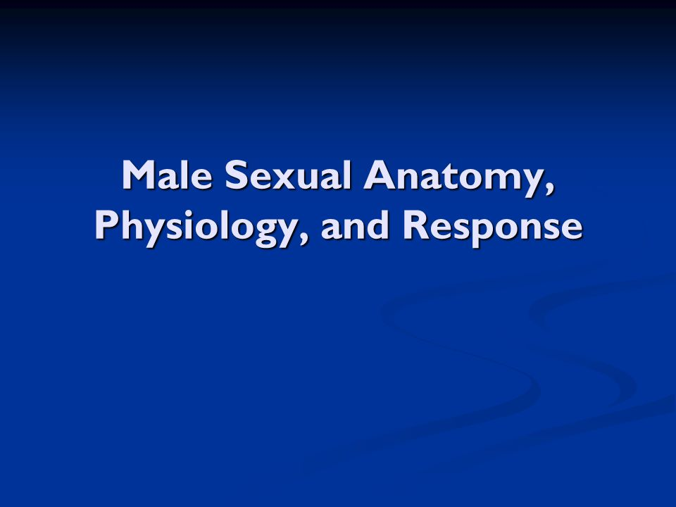 Male Sexual Anatomy, Physiology, and Response
