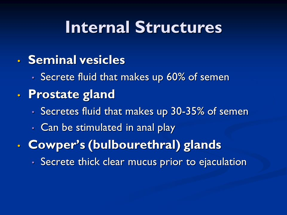 Internal Structures Seminal vesicles Prostate gland