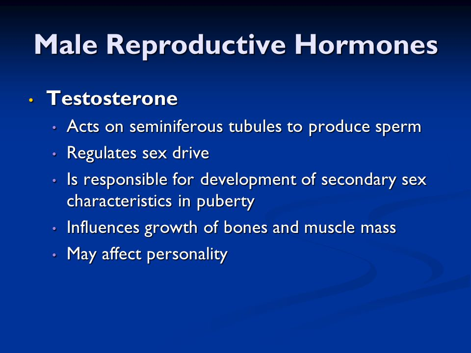 Male Reproductive Hormones