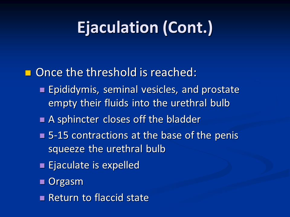 Ejaculation (Cont.) Once the threshold is reached: