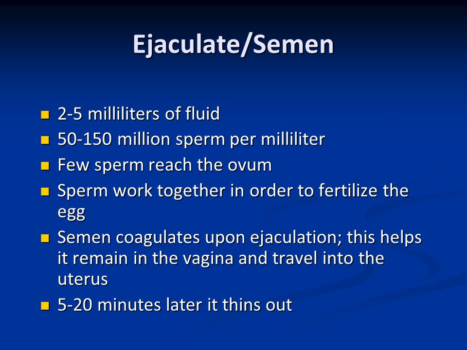 Ejaculate/Semen 2-5 milliliters of fluid