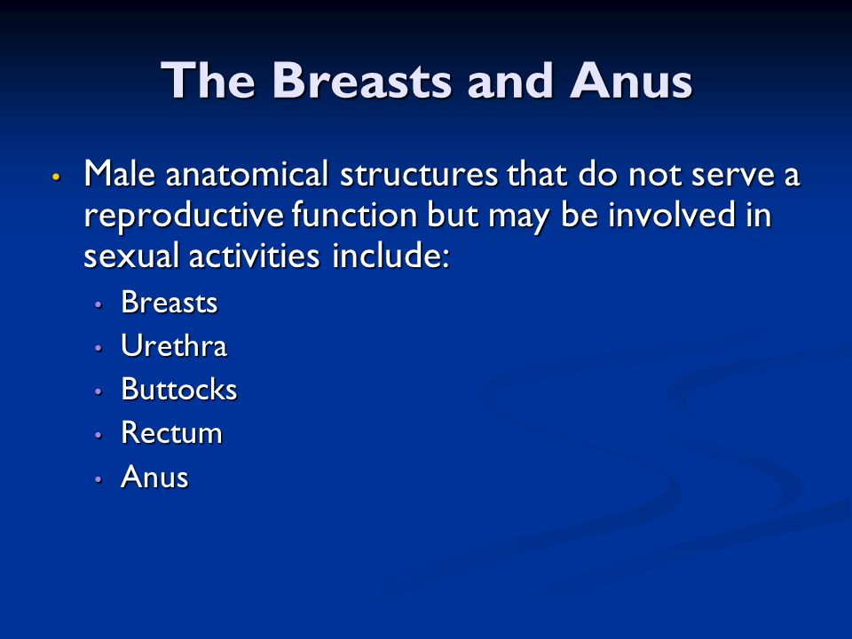 The Breasts and Anus Male anatomical structures that do not serve a reproductive function but may be involved in sexual activities include: