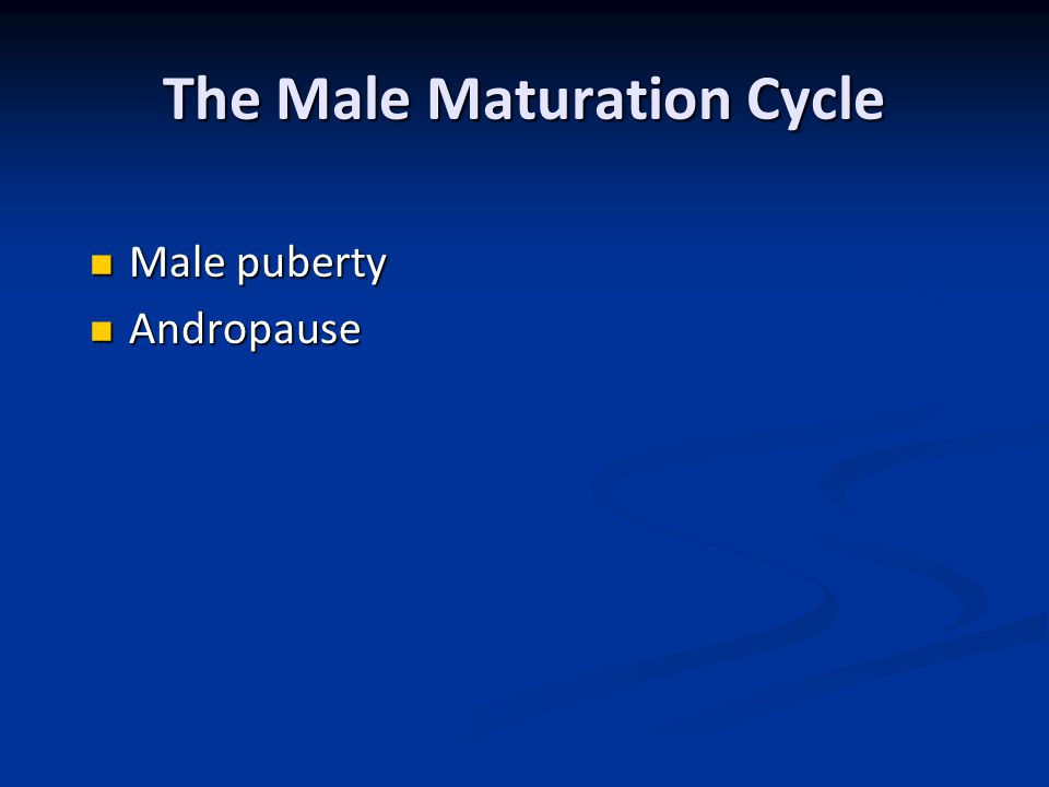 The Male Maturation Cycle