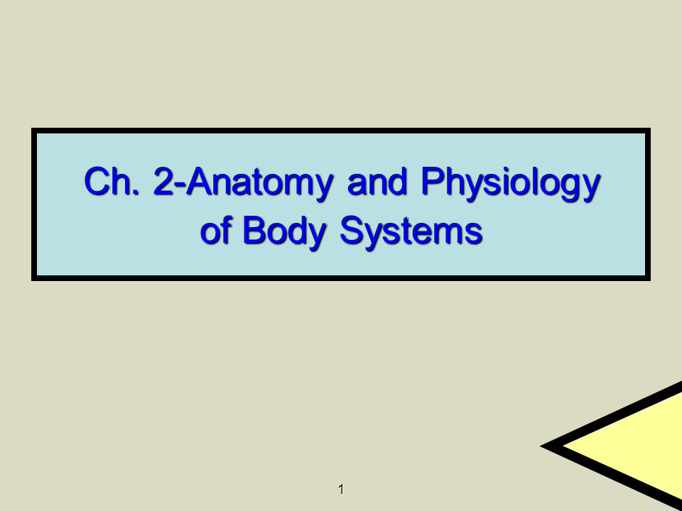 Ch. 2-Anatomy and Physiology of Body Systems