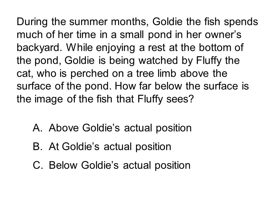 During the summer months, Goldie the fish spends much of her time in a small pond in her owner's backyard. While enjoying a rest at the bottom of the pond, Goldie is being watched by Fluffy the cat, who is perched on a tree limb above the surface of the pond. How far below the surface is the image of the fish that Fluffy sees