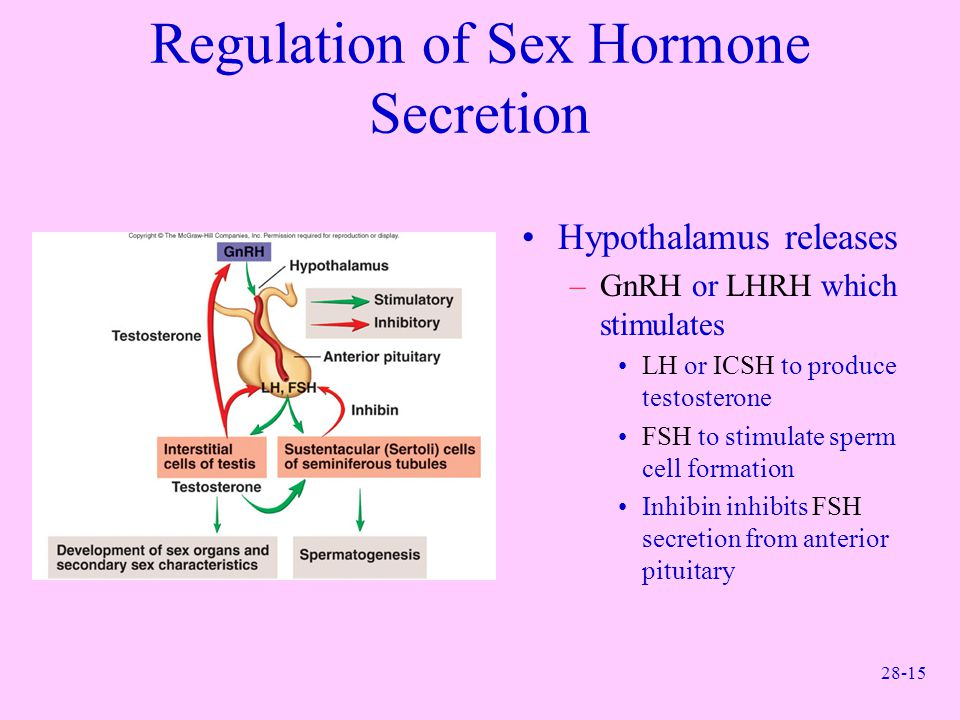 Regulation of Sex Hormone Secretion