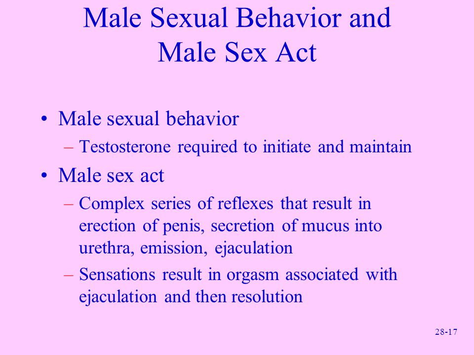 Male Sexual Behavior and Male Sex Act