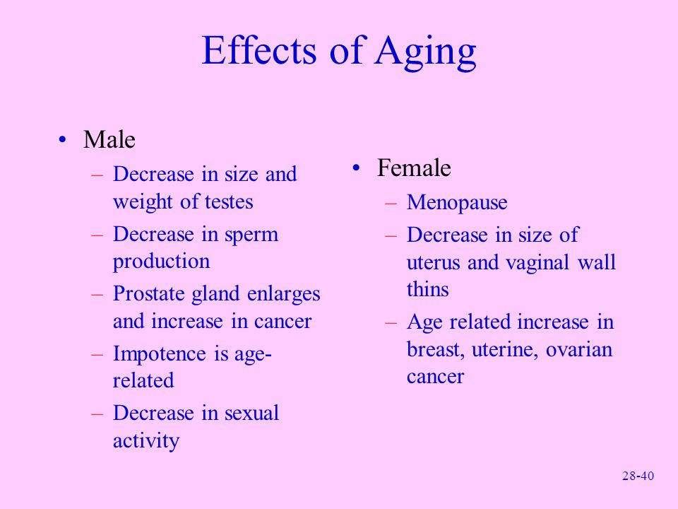 Effects of Aging Male Female Decrease in size and weight of testes