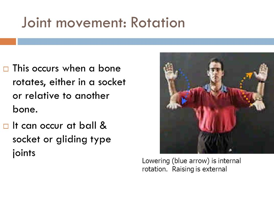 Joint movement: Rotation