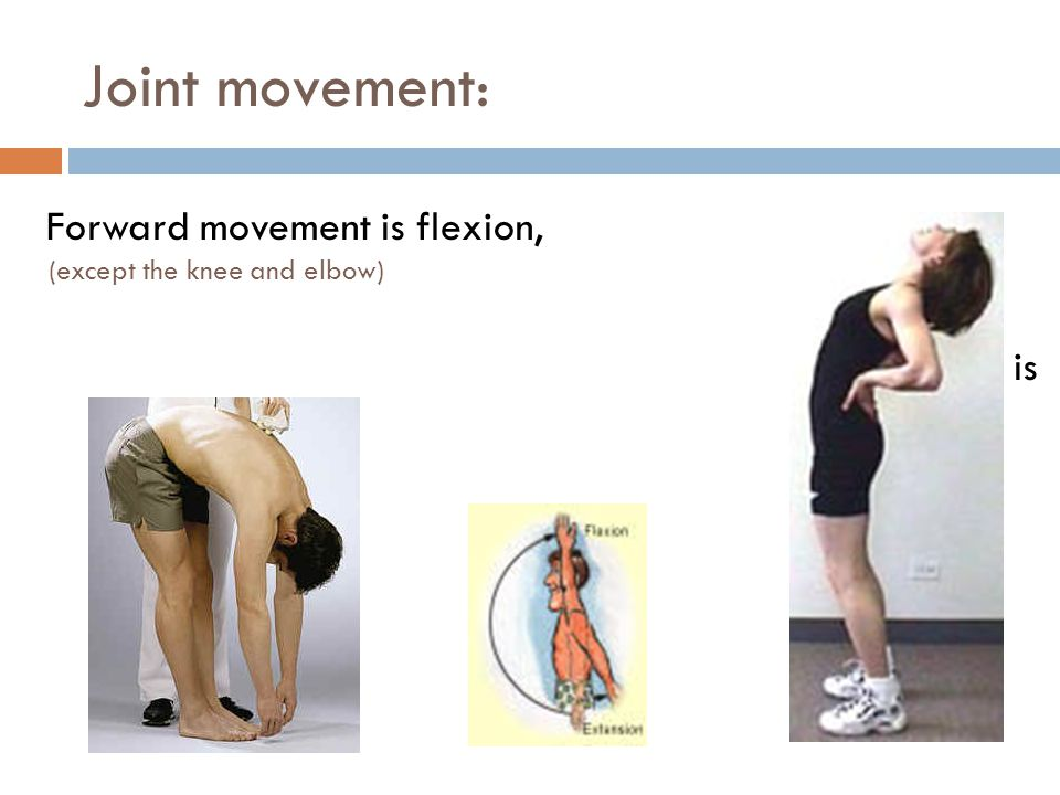 Joint movement: Forward movement is flexion, (except the knee and elbow) Rearward movement is extension.