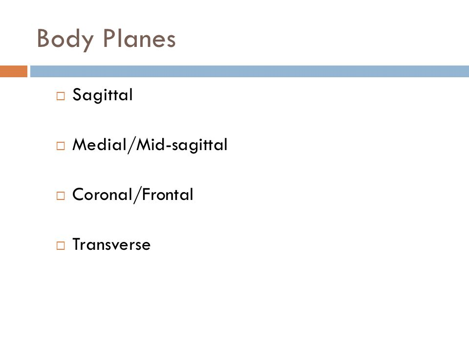 Body Planes Sagittal Medial/Mid-sagittal Coronal/Frontal Transverse