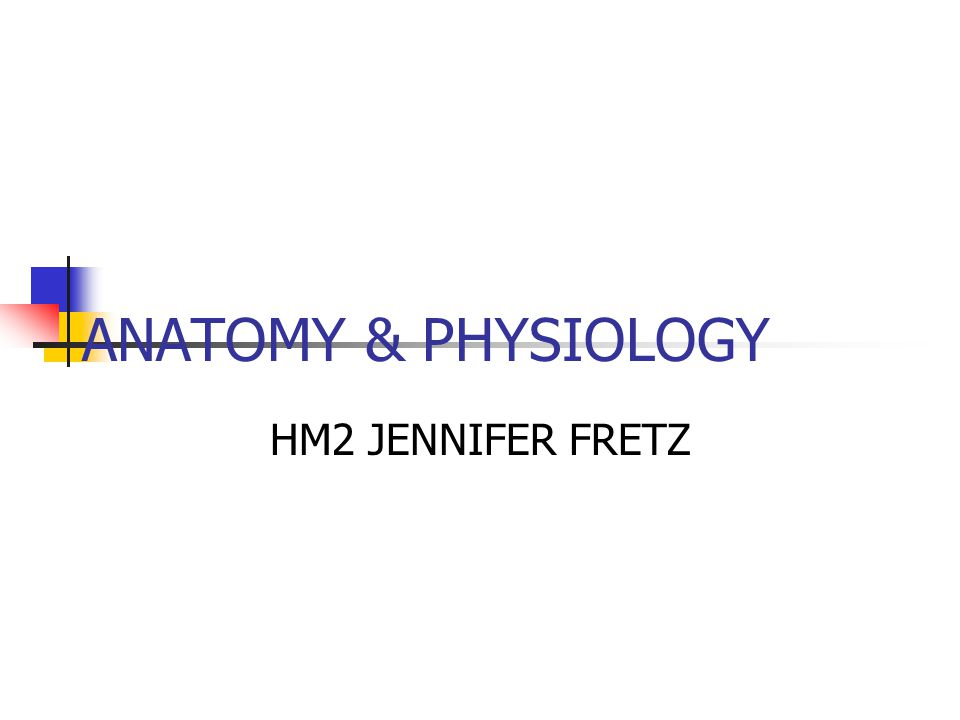 ANATOMY & PHYSIOLOGY HM2 JENNIFER FRETZ