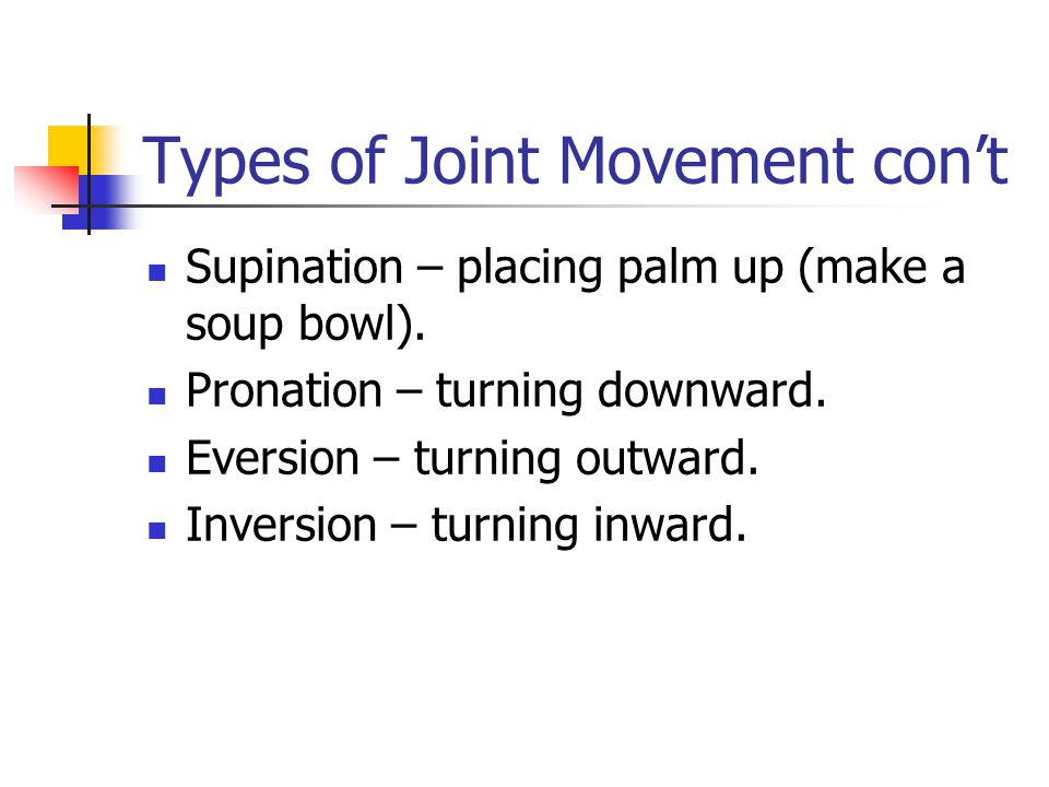 Types of Joint Movement con't