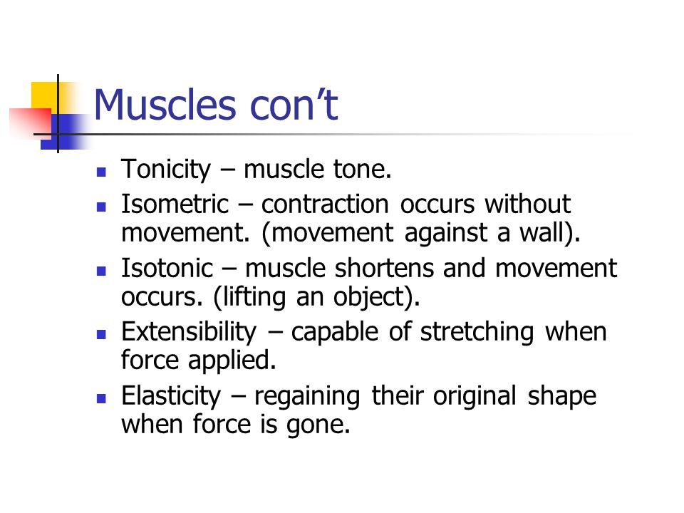 Muscles con't Tonicity – muscle tone.