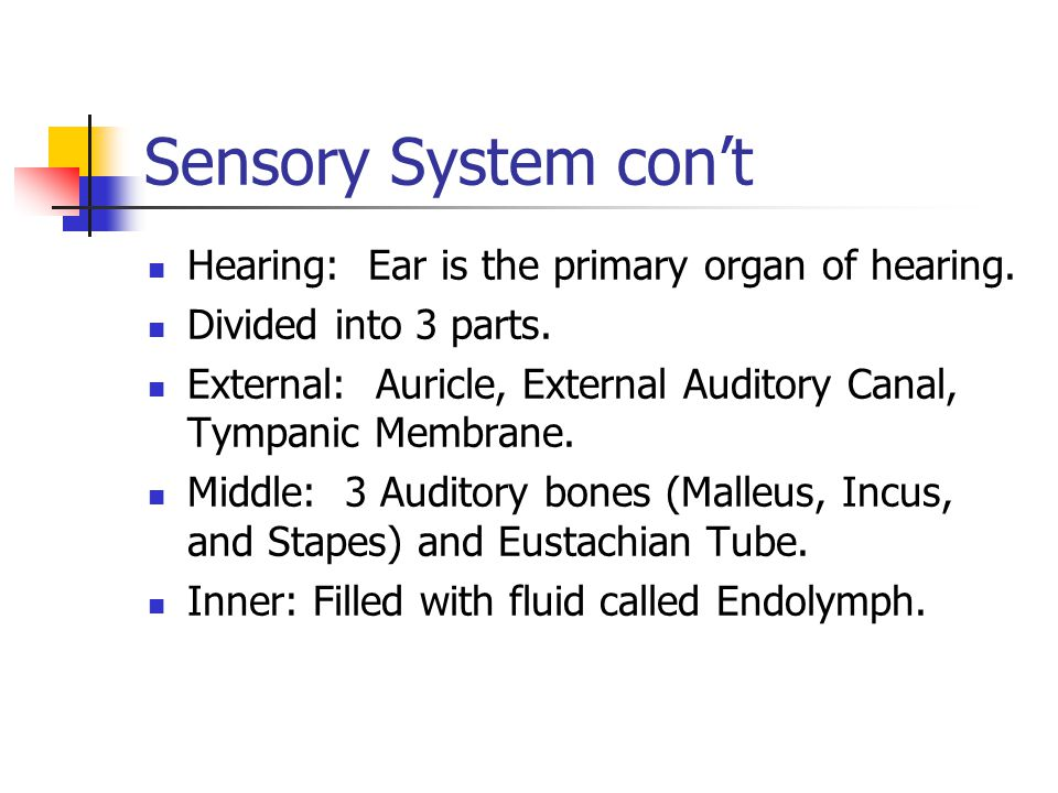 Sensory System con't Hearing: Ear is the primary organ of hearing.