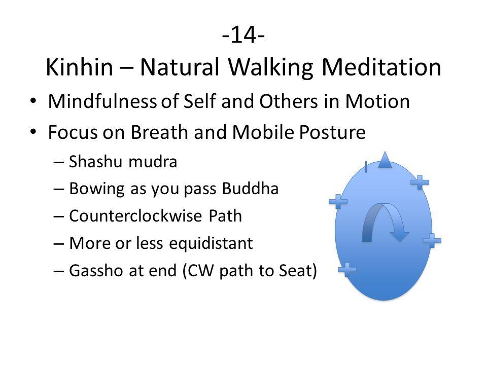 -14- Kinhin – Natural Walking Meditation