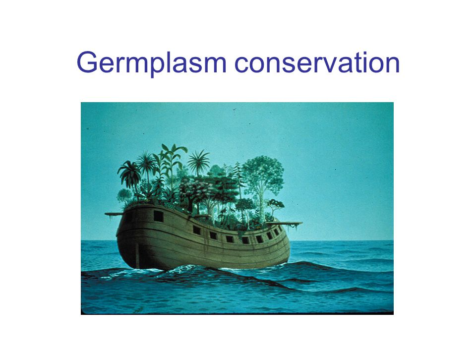 Germplasm conservation