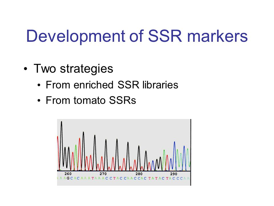 Development of SSR markers