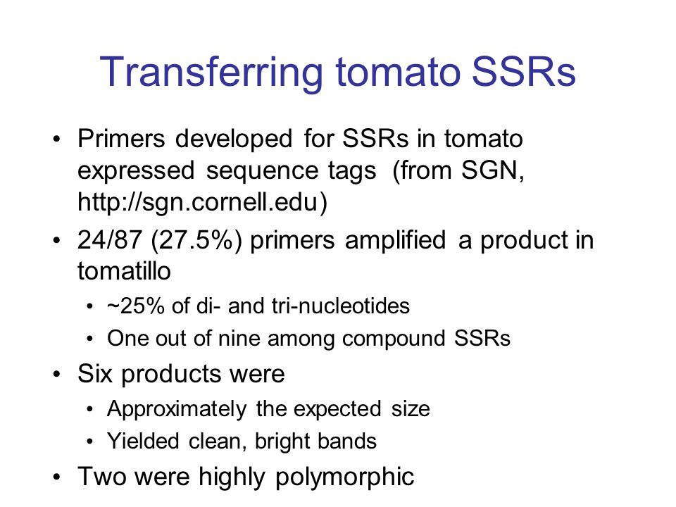 Transferring tomato SSRs
