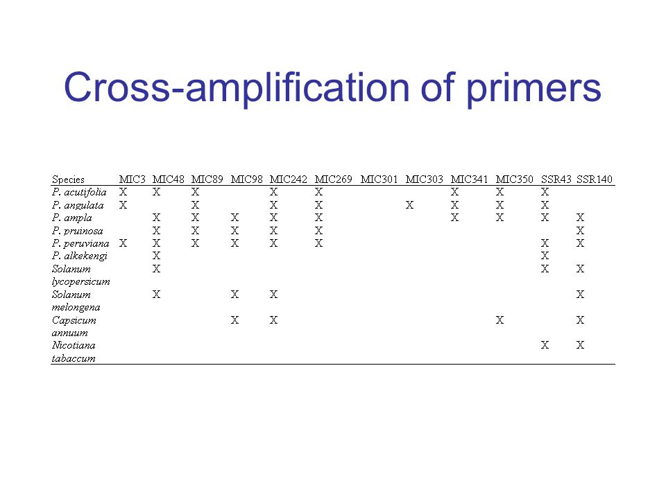 Cross-amplification of primers