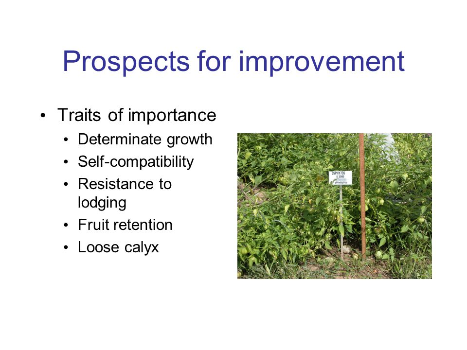 Prospects for improvement