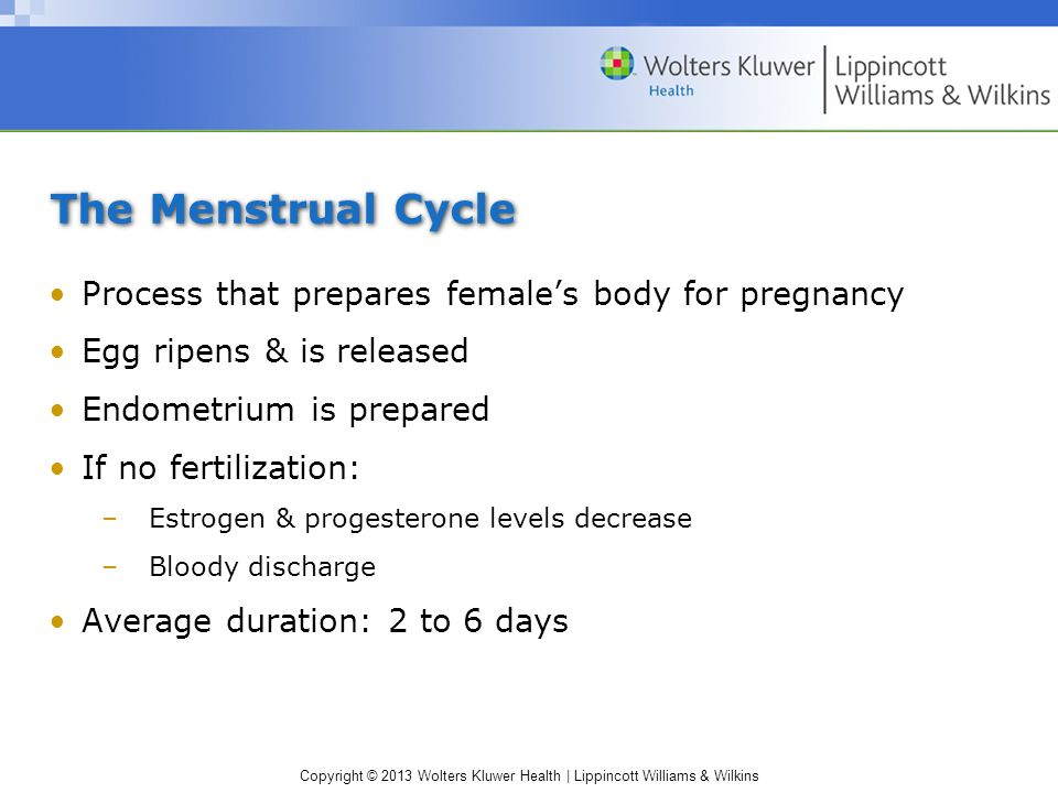 The Menstrual Cycle Process that prepares female's body for pregnancy