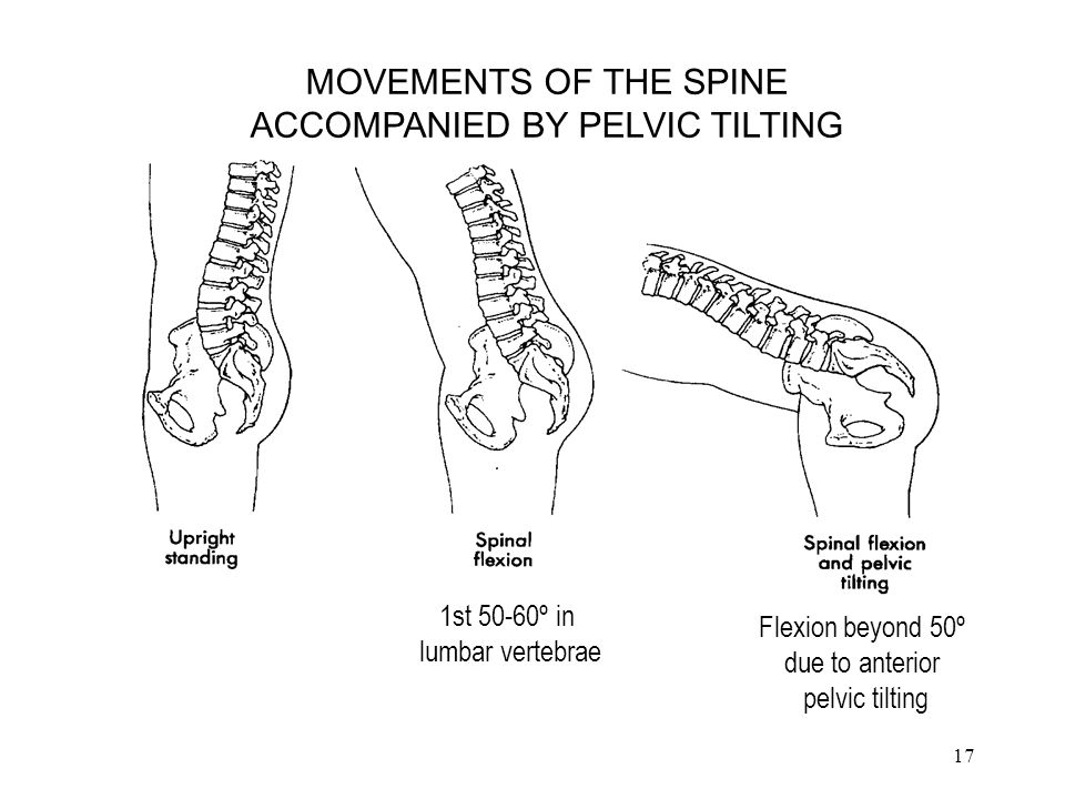 ACCOMPANIED BY PELVIC TILTING