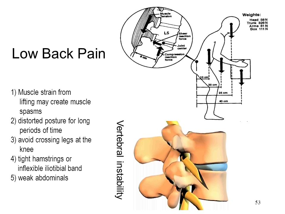Low Back Pain Vertebral instability 1) Muscle strain from