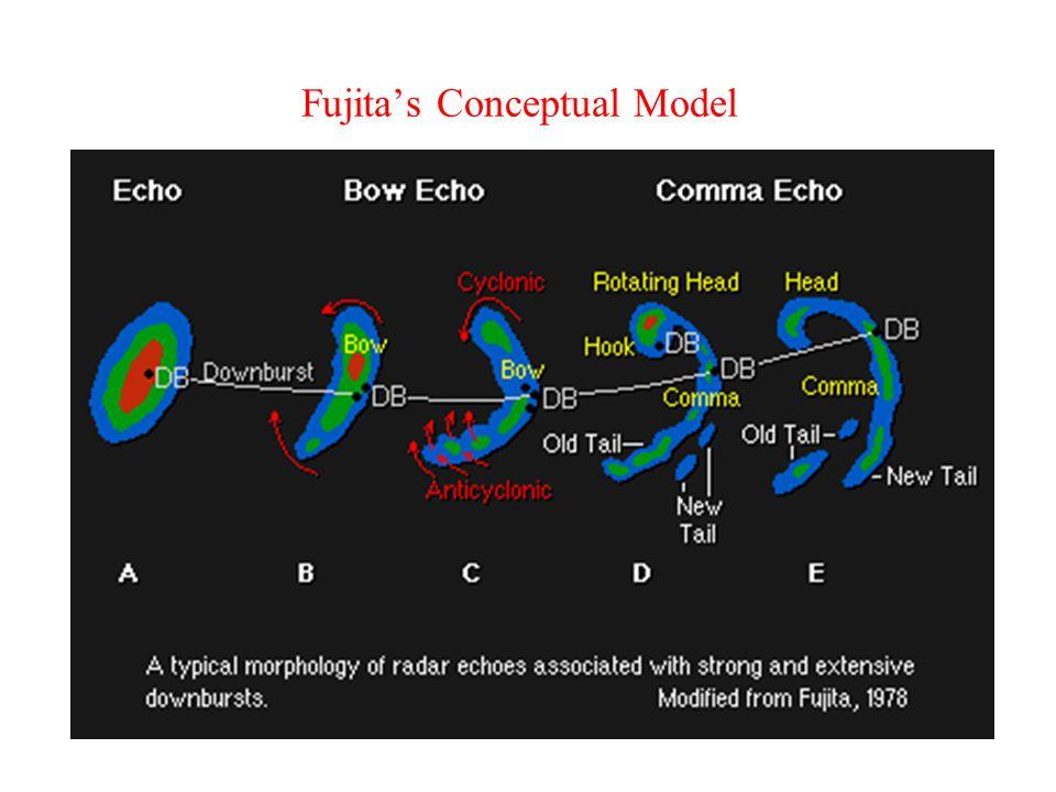 Fujita's Conceptual Model