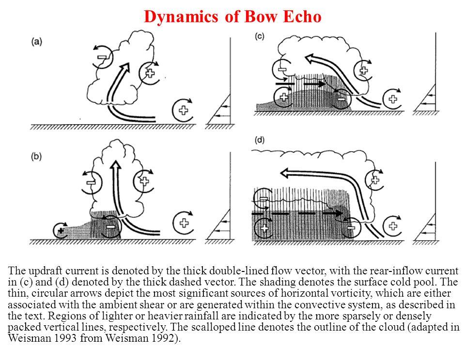 Dynamics of Bow Echo