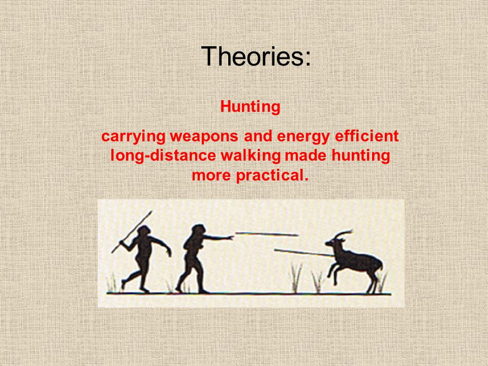 Theories: Hunting.