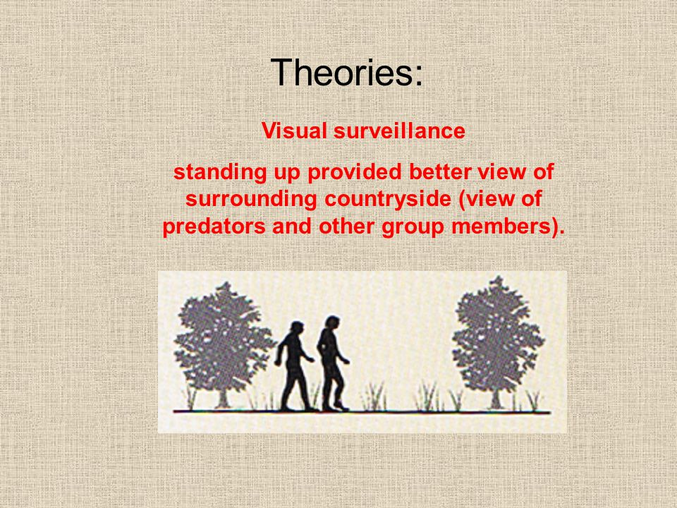 Theories: Visual surveillance
