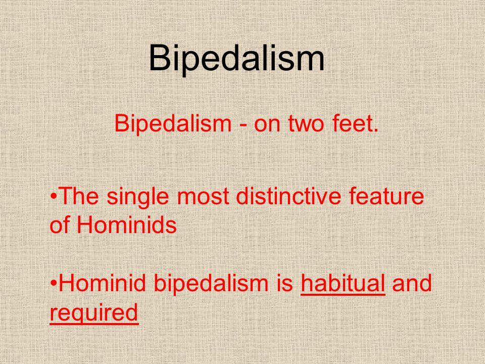 Bipedalism - on two feet.