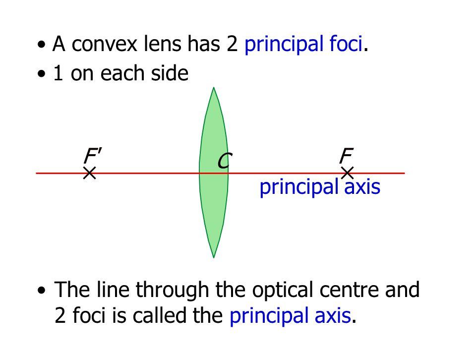 A convex lens has 2 principal foci.