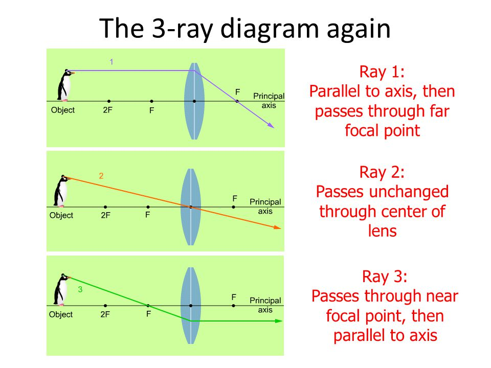 The 3-ray diagram again Ray 1: Parallel to axis, then passes through far focal point. Ray 2: Passes unchanged through center of lens.