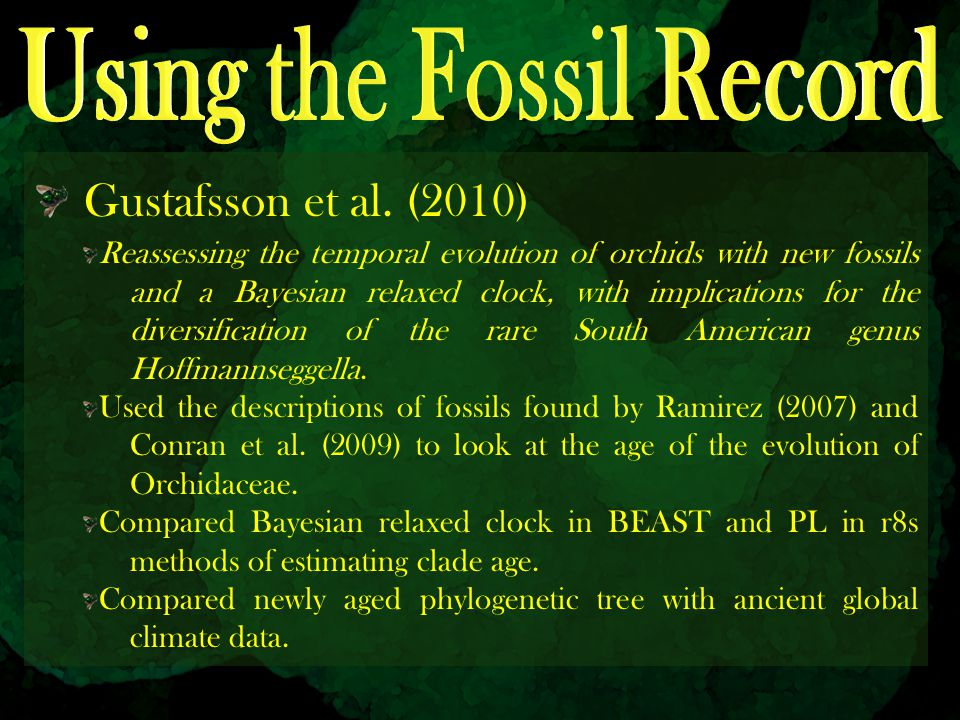 Using the Fossil Record